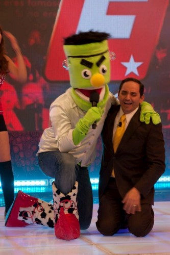 Mister Green De